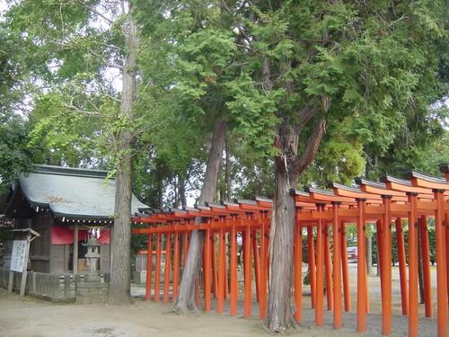 Kumamoto - Suizen-ji koen, portiques sacrés, autre vue