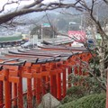 Petit temple shinto local [2]