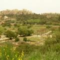 vent du sahara sur les jardins de l'acropoles