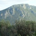 Delphes : autre montagne