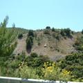 Epidaure : bord de route