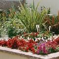Nouvelle jardinière place du Marché aux Chevaux