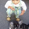 Mathieu et le chat © 2005