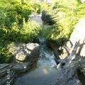 Photo_475