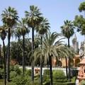 Jardins_du_Palais_Alcazar_S_ville1