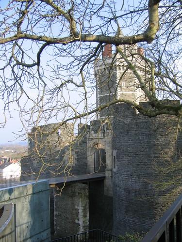Château de Oudon