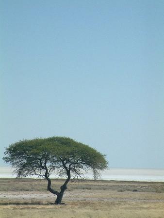 namibie_0043