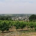 Bonnezeaux_2006_011
