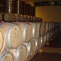 Bourgogne_2004_010