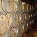 Bourgogne_2004_011