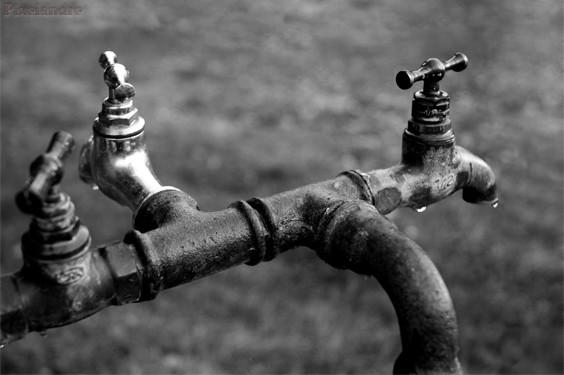 robinets1