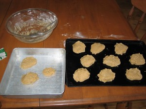 biscuits_009