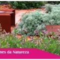 parfums de la nature