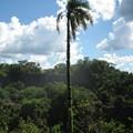 Iguacu__8_