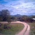 Manaus__1_