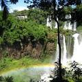 Iguacu_argentin__7_1