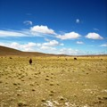 Altiplano_day_1__15_
