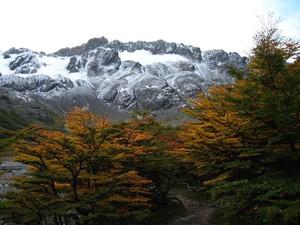 glacier_ushuaia__18_