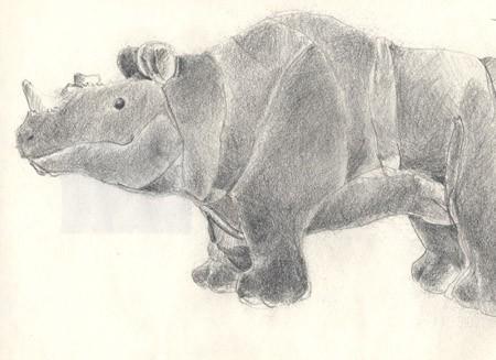 rhino20001