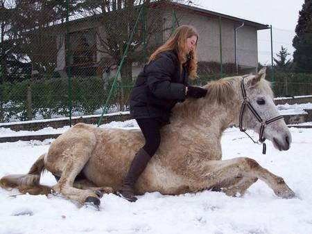 capricioza_couch__cheval_1