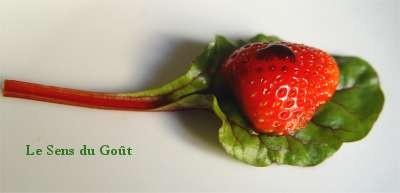 fraise2