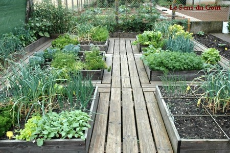 Un potager en carr le sens du go t for Amenagement jardin carre
