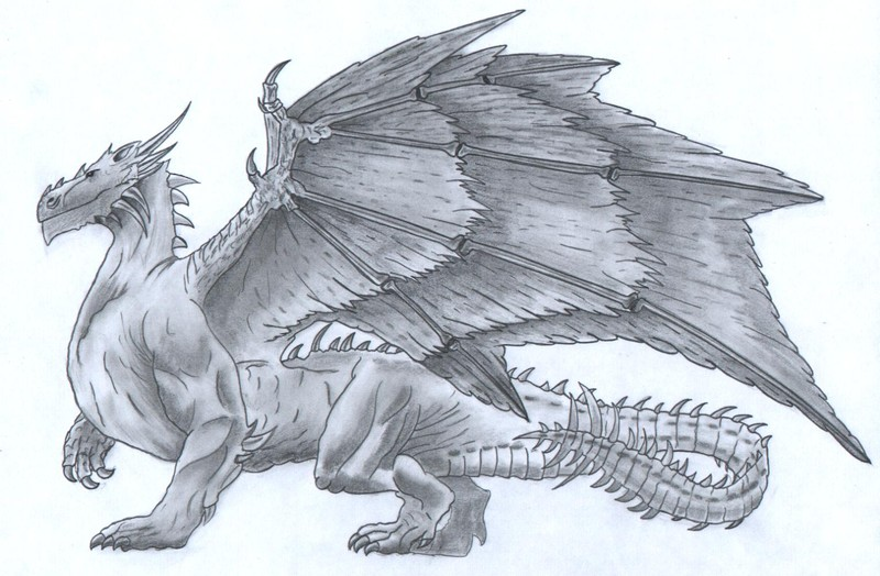 Dragon9d1 photo de etapes de dessin dragon un jour - Dessin facile de dragon ...