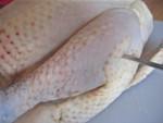 poulet_17