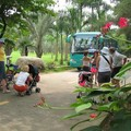 Promenade en nature tropicale