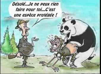 desol__humour