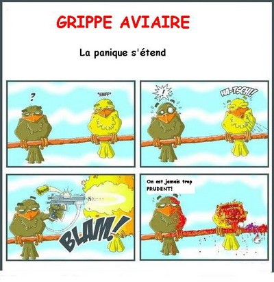 grippe_aviaire1