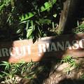 Circuit Rianasoa au Parc National Mantadia
