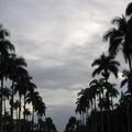 Toamasina ville