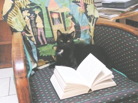 Philo : eh oui, j'adore lire...