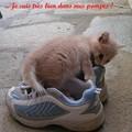 Jolie_dans_sa_pompe____3__copie