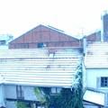Aubervilliers sour la neige - hiver 2005