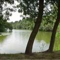 parc_de_la_garenne_3