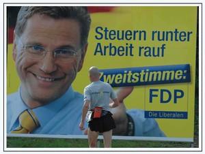 dlf_sur_fond_campagne_polit