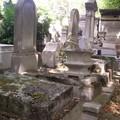 Alignement de tombes