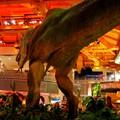 Le T-Rex mais vue de derriere