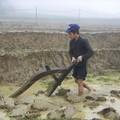 Fermier retournant la terre, on marchait sur le bord des riziere