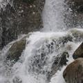 torrent du cerro