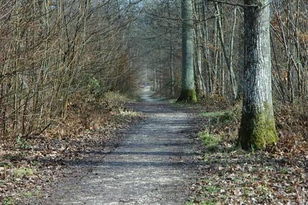 chemin_2