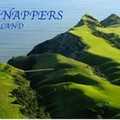 V) Cape Kidnappers