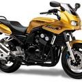 Yamaha_Fazer1000_3_M